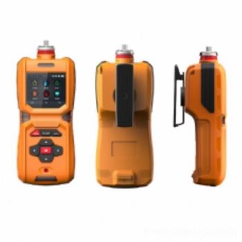 TD600-SH-CH4O便携式甲醇检测仪