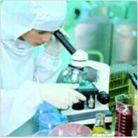 进口标准品CAS号:246021-75-0标准品泛昔洛韦相关化合物A
