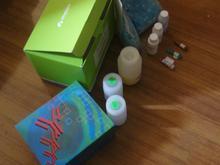 人黄体生成素释放激素(LHRH)ELISA试剂盒说明书,厂家