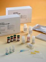 代测兔子胶原酶II(CollagenaseII)ELISA试剂盒价格