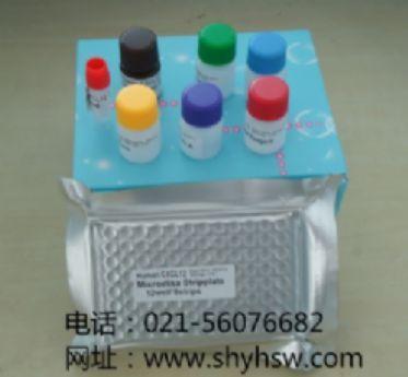 人D-乳酸脱氢酶(D-LDH) ELISA Kit