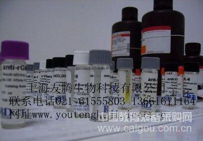 人XC趋化因子受体1(XCR1)ELISA Kit
