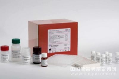 猪钠-葡萄糖共转运载体1(SGLT1)ELISA试剂盒