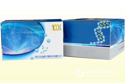 大鼠胰岛素受体底物2ELISA试剂盒