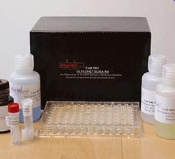大鼠卵巢癌标志物CA125ELISAELISA Kit