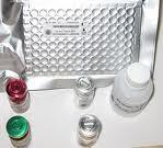 植物血凝素(PHA)ELISA Kit