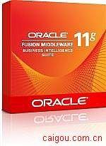 oracle11g企业版 25用户