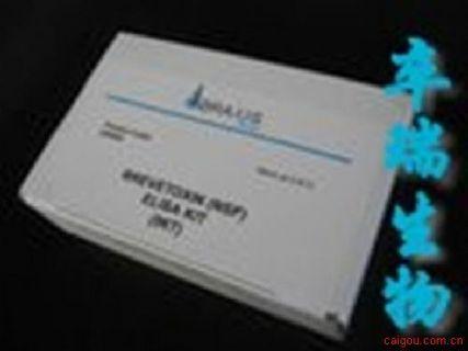 人脑源性神经营养因子(BDNF)Elisa试剂盒