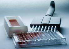 人利钾尿肽(KP)elisa试剂盒
