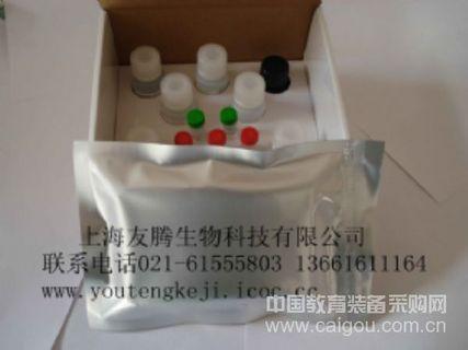 小鼠干扰素α(IFNα)ELISA Kit Mouse Interferon α ELISA Kit