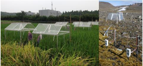 土壤呼吸测量研究技术方案