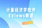 强大的计量经济学软件EViews概述