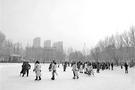 黑龙江大学:冰雪文化融入课程