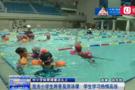 青岛小学将普及游泳武术课 正制定特殊计划