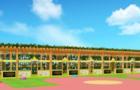鑫特乐幼儿园案例分享 |让学习更有趣 让成长更健康