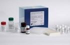 总抗氧化能力检测试剂盒