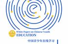 《中国青少年在线学习白皮书》发布,解析火花思维等头部企业矩阵式发展之道