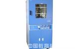 250℃立式真空烘箱(215L)-DZF-6210