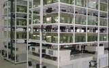 愛生研究級水生模式動物養殖繁育系統設備