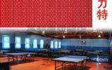 英利奧艾利特布紋pvc運動地板乒乓球羽毛球籃球