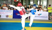 浦江县中小学跆拳道比赛在体育中心圆满落幕