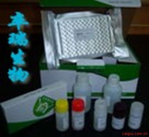 风疹病毒抗体IgG检测试剂盒