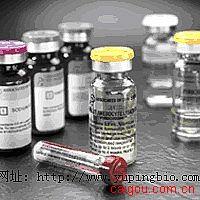 人UL16结合蛋白-3(ULBP-3)ELISA试剂盒