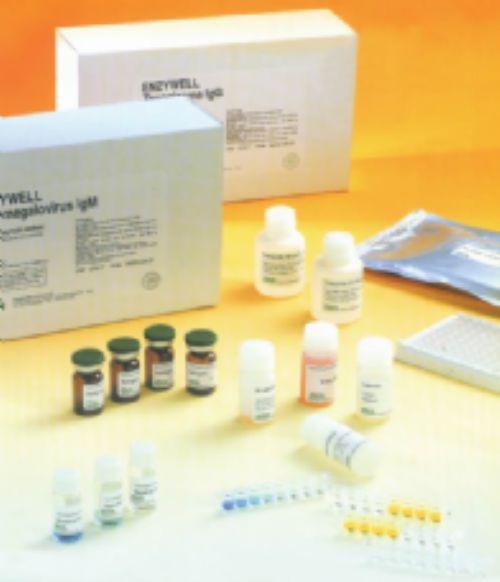 小鼠白介素1试剂盒