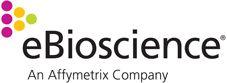 anti-mouse Granzyme B Biotin 16G6