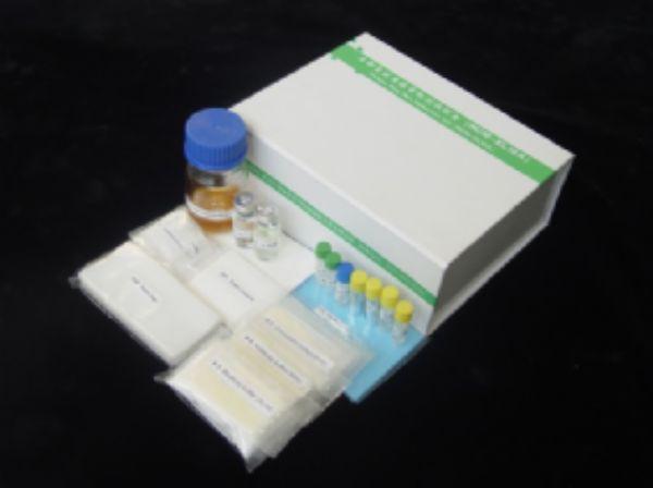 大鼠戊糖素(Pentosidine)ELISA试剂盒