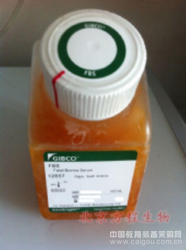 人精氨基琥珀酸合成酶1(ASS1)检测/(ELISA)kit试剂盒/免费检测