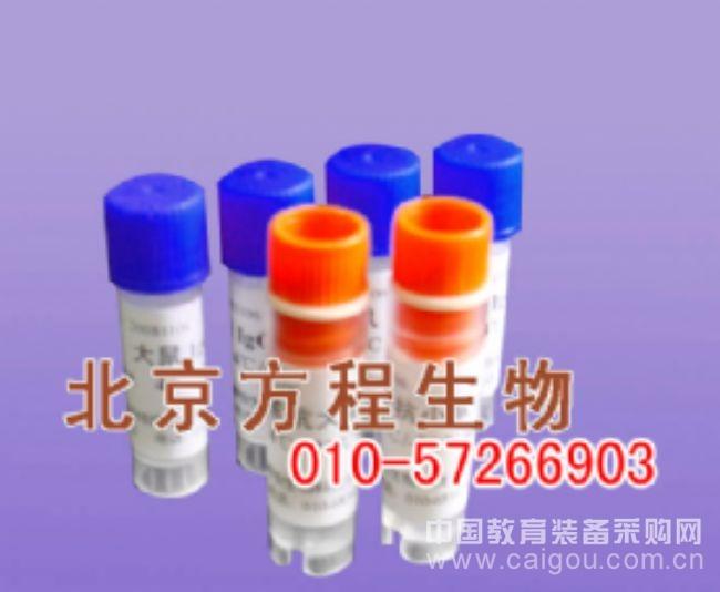 对照品CAS: 83-46-5 β-谷甾醇价格