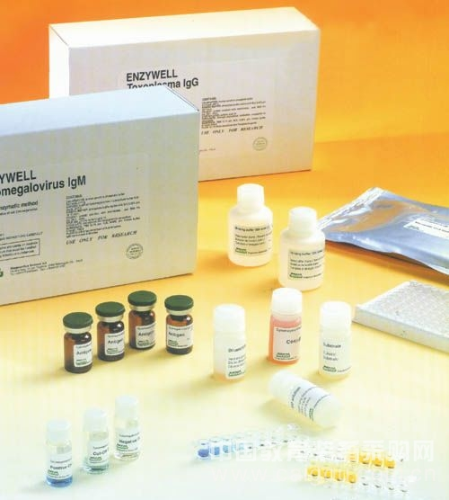 人干细胞因子/肥大细胞生长因子(SCF/MGF)ELISA试剂盒