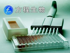 北京RF人类风湿因子ELISA试剂盒代测