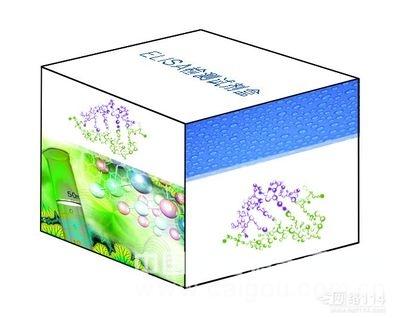 大鼠中性粒细胞明胶酶相关脂质运载蛋白(NGAL)ELISA试剂盒