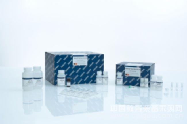 QIAamp DNA Mini Kit (250) 51306 (QIAGEN)