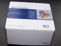 人胰岛素(Insulin)ELISA Kit