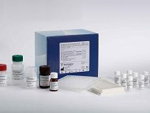 人凝血因子Ⅲ(FⅢ)ELISA试剂盒