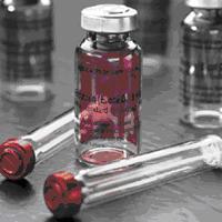 DNA Marker Ⅴ
