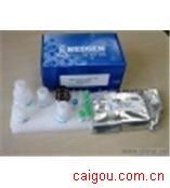 (ACE)人血管紧张素转化酶Elisa试剂盒