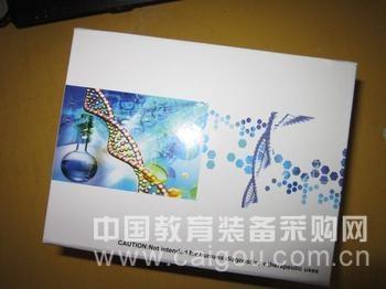 小鼠抗小核糖核蛋白/Sm抗体(snRNP/Sm)ELISA试剂盒