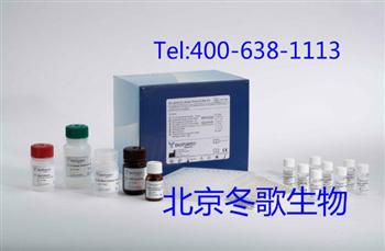 大鼠N端前脑钠素试剂盒,大鼠(NT-proBNP)Elisa试剂盒