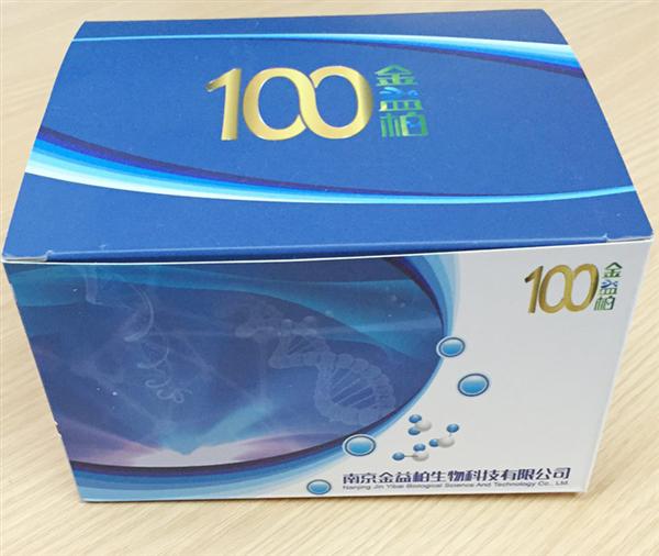 大鼠血栓素ELISA试剂盒